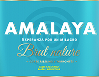 Amalaya Wines • Design Proposals