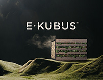 E-KUBUS - Visual Identity