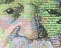 GABO / Ilustraciones para Revista Anfibia
