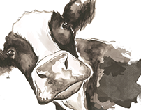 Watercolour Cow- Package Design