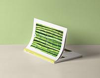 Bamboo Boom - Material Magazine