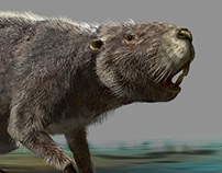 Castoroides ohioensis - giant beaver