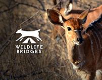 Wildlife Bridges - Animal Welfare Campaign