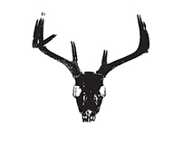 STAG Concept