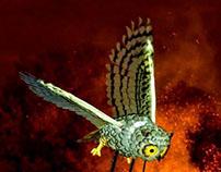 Owl Puppet - Halloween Lantern Carnival 2012