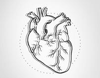 Pseudo 3D Heart