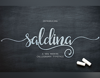 Saldina is a brush lettering script font free download