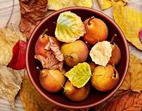 Ripe peach.Autumn backgrouds