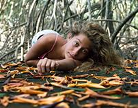 The Plantations Mangroves ( bis )