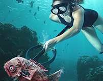 Catch & Recycle: Spear Fishing