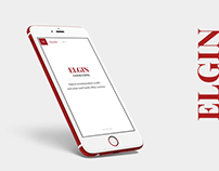 Elgin — consulting company website