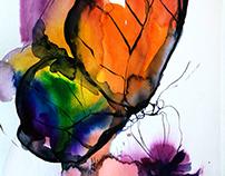 Rainbow butterflies 2015-2017