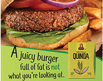 India Gate - Quinoa Brand Launch Campaign