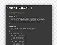 FREE PSD - Programmer Professional Resume