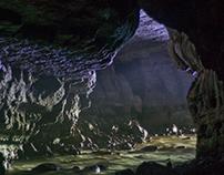 Parque Nacional Natural Cueva De Los Guacharos