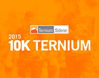 10K Ternium