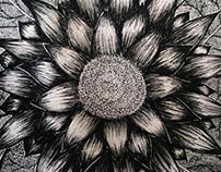 Sketchbook Log 1 - Flower Of The Eden