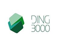DING 3000 IDENTITY