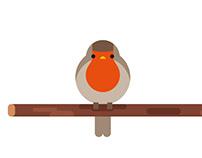 Birds minimal design