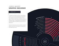 James Ward CV Infographic