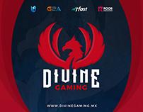 Divine Gaming - Logo / Wallpaper eSports