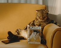 DTAC: Playcat [Cinematography]