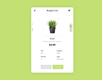 Mapple Cart - Your Personal Florist
