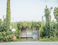 Bushaltestellen / Bus Stops