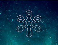 Web Arctic Video