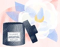 Интерьерные ароматы для BeautyBackstage.ru