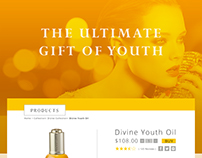 The Ultimate Gift of Youth - Presentation