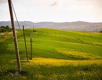 Colline Toscane - Orciano Pisano