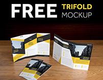 FREE PSD Trifold Mockup