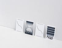 hap ceramics identity