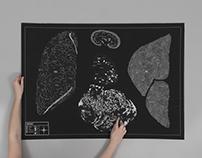 1. Microcosme, la cartographie du corps
