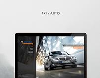 Web Design for Tri Auto