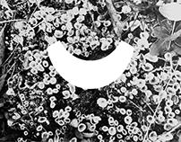 LOGO / Liniyka Jewellery