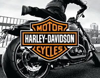 HARLEY-DAVIDSON: Website + Social Media