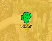 iKactus Accesorios