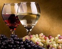 Tips to Enhance a Wine Tasting Experience