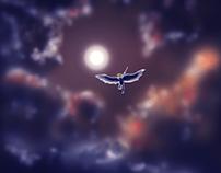 Flying Hero