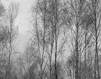 I_ColdWar