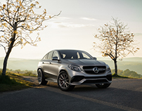 Country Mercedes AMG GLE63
