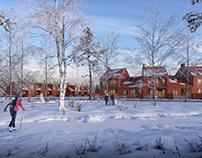 Winter visualization