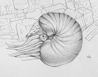 Absurdist Drawings