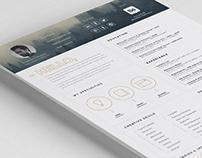 Free Impressive Resume Template with Icon Set