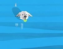 Dog Day Meditation