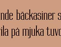 Lindonesia typeface