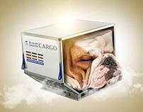 SAUDIA CARGO Delivery Campaign