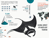 A giant opportunity / Marine Megafauna Foundation